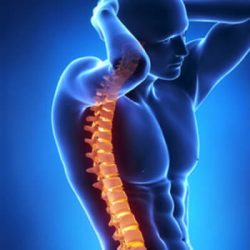 Chiropractic Treatment Screenings